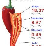 [Curiosidade Interessantíssima] Onde está concentrado o ardido das pimentas?