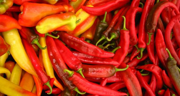 mundo das pimentas