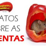 Mais 5 FATOS sobre as Pimentas