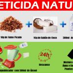 Inseticida Natural