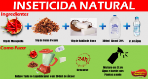 inceticida natural
